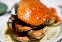 Best of SF Foodies / Best selection of photos from our events! / by San Francisco Foodies