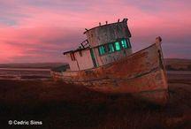 boats / by nina phillips