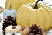 Autumn, Halloween, & Thanksgiving Decorations / by Melissa G