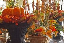 Autumn Home & Harvest / Fall Crafts & Decorations to Make the House a Home / by Audrey Updyke
