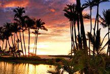 Aloha / by Debbie Blackwell Sievers