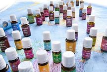 ⭐YOUNG LiViNG⭐ / by Linda Martin