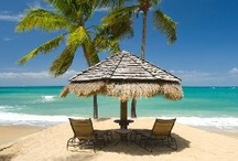 Beautiful beaches  / Dream beaches around the world / by Tove Engebretsen