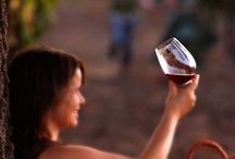 Member Winery Wines / by Heart of Sonoma Valley Winery Association