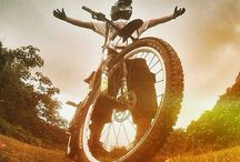 Down Hill MTB / by Timothy Brault