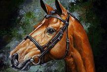 Equine art / by Belinda Ruport