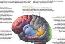 Schizophrenia / While working on my Pinterest boards for bipolar disorder, I have come across a lot of information on Schizophrenia so I decided to start a board on this topic. / by Bipolar Bandit & Mental Health