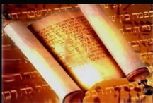 Biblical and Israel information / by Coco