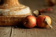 Autumn / by Ann M
