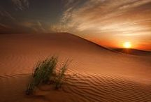 Deserts / Photos and art of deserts, sand, remote places and sand dunes / by Megan Joel Peterson