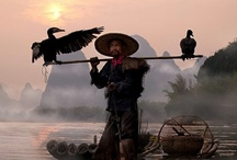 China / by Megan Joel Peterson