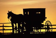 Amish / by Jeannie Moyer