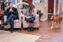 PETS - Home & Family / We love pets just as much as you! Get great tips on pet care, behavior and overall health! Watch Home and Family each weekday at 10a/9c on Hallmark Channel! / by Home and Family