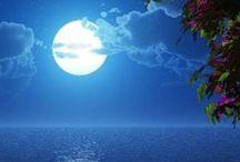 Moon Light / by Miguel Arroyo