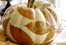 Halloween/Fall Decor&Party Ideas  / by Mindy Crain