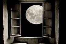 windows / by Deborah Gorton
