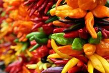 Peppers / Sweet or hot you can't beat these heirloom pepper seeds! / by Sustainable Seed Co.