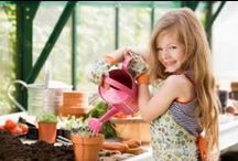 Inspiring Children in the Garden / by Sustainable Seed Co.