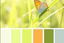Colours / by Vladka Cepakova
