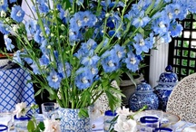 Blue and White / by Christine Poko
