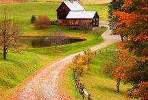 New England / the joys, travel and colors of New England / by The Linen Lavoir