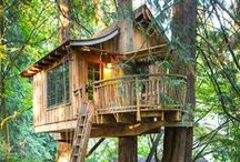 Treehouses / by Diane Helt