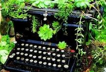 Typewriter Nostalgia / by Paula Ogier
