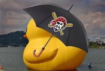 Let's Go Bucs! / by Allegheny County