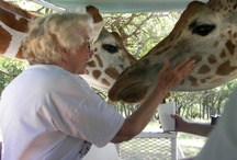 Sit back and enjoy the tour! / by Fossil Rim Wildlife Center
