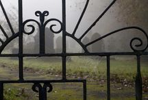 Wrought Iron Whimsy / Gates, Doors & Details / by Mireille