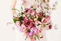 Wedding Style / Ideas and inspirations for your Wedding! / by Mendocino Beauty