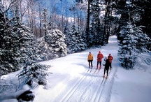 Skiing / by WinterWomen.com