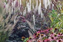 Garden / Layoutideer för trädgård / by Nina Starck