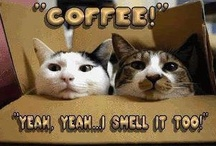 COFFEE JUNKIE! / Coffee ranks right up there with mankind on God's most wonderful creations list.... LOVE Me Some COFFFFEEEEEEE!!! / by Diane Jones