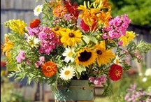 Anytime Flower Arrangements / Arrangement Ideas for Work. Fellow Florists & Pinners...YOU inspire me, Thank you! / by Ashlee Hood