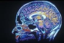 brainy / by Lori Gordon