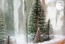 Christmas  / by Kody Ayhan