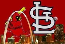 St. Louis Cardinals / by Kirk Gillespie