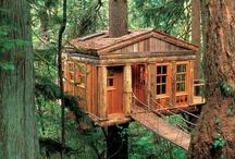 treehouses / by Faith Pahoundis