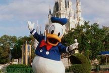 Donald Duck! / by Sara Olsen