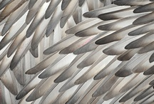 patterns, rhythms and textures / by Michelle Jones