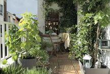 Envie de bulle végétale / Les plantes foisonnent sur les balcons, le faux gazon dessine une bulle verte et le végétal prend racine sur les murs ! Le bois et le rotin donnent la réplique au vert pour une déco plus vraie que nature. A l'intérieur comme à l'extérieur, c'est un véritable nid végétal qui nous fait prendre la clef des champs. / by Leroy Merlin