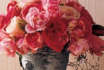 smell the flowers / by Sarah Geldart