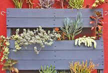 We Love Pallet-ology / At Simpsons we recycle a lot of pallets, which got us thinking about what else you can do with them, so here's a few of the ideas we came across to hopefully inspire a few pallet projects...   / by Simpsons Garden Centre