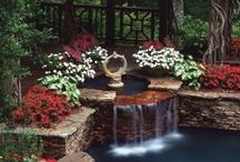 Gardens / by AJ Steele
