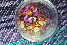 garden / by peplum + coffee
