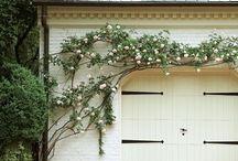 Plants & pretties / by Christa Smith
