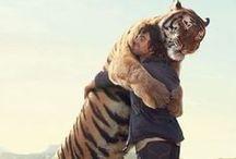 amizades muito legais! / crianças, adultos e animais e com animais ou com humanos em interação / by Damiria Machado