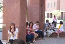 Social gatherings I / Staff Picnic 2013 / by Health Sciences Library, Anschutz Medical Campus, University of Colorado