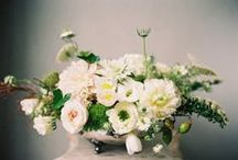 Centrepieces - Low / by Flower 597